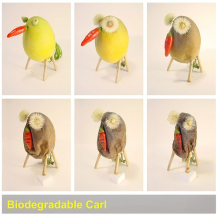 Biodegradable animals